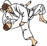 judo pin
